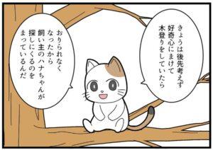 『ペットのアルフレッド』(木村まつりさん提供)
