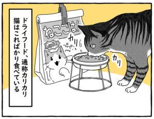 猫はカリカリばかりで飽きないのだろうか?