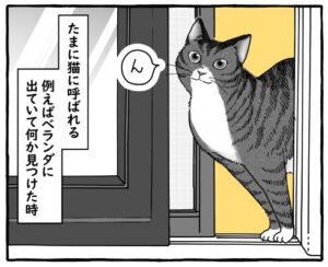 何かを見つけると飼い主を呼ぶ猫