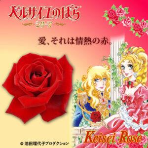 京成バラ園で販売されている「ベルサイユのばら(R)」シリーズ