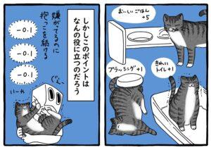 貯まっていく猫ポイント